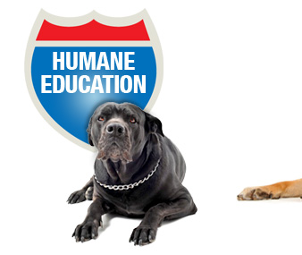 Humane Education